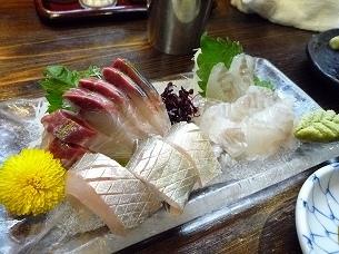 シマアジとマコガレイ.jpg