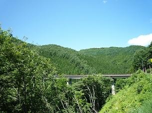 中山峠への道.jpg