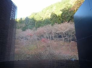 二人静から見た風景.jpg