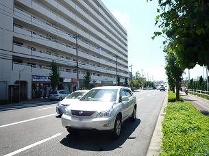 処理済~横断歩道は遥か先にあるー2.jpg
