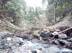 土石流の痕跡.jpg