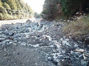 土石流の痕跡2.jpg