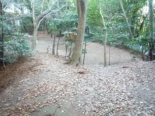増尾城土塁上から郭内を見る1.jpg