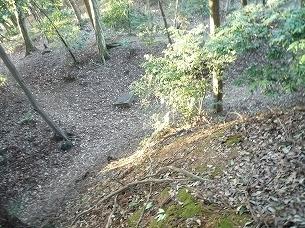 増尾城土塁上から郭内を見る2.jpg