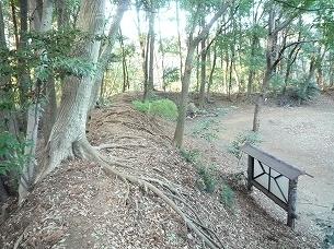 増尾城大土塁5.jpg