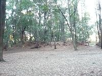 増尾城郭内3.jpg