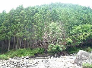 大森山崩落の跡.jpg