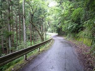 宿への道1.jpg