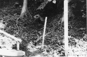 昭和40年代の九つ井古写真.jpg
