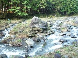 朝の船山川2.jpg