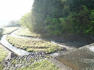 朝陽に映える船山川.jpg