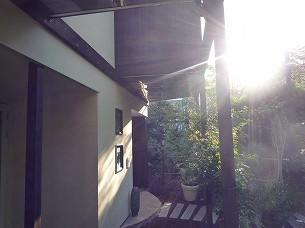 朝陽に眩いさら.jpg