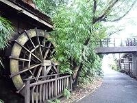 水車と離れへ渡る橋.jpg