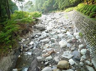 河原の石たち1.jpg