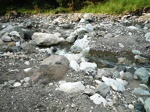 河原の石たち2.jpg