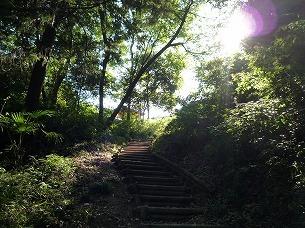 渓谷から登る.jpg