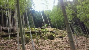 熊&ヤマビル現場2.jpg