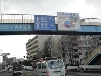 綱島街道1.jpg
