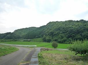 護られた村々2.jpg