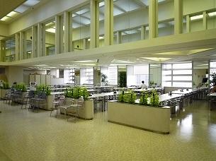 都庁の食堂.jpg