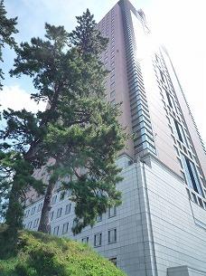 高層県庁.jpg