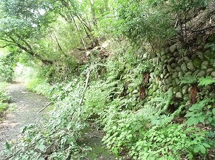 丸い石垣の擁壁路.jpg