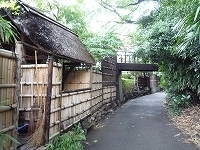 九つ井~離れへ渡る橋.jpg