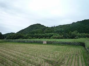 周辺の農村3.jpg