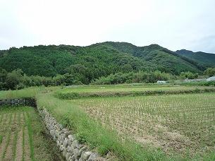 周辺の農村4.jpg