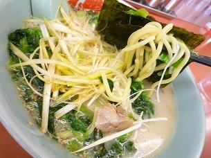 太麺.jpg