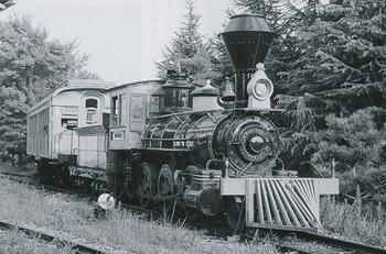奈良ランド機関車.jpg