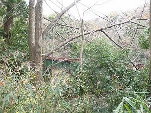 現在線の鉄橋.jpg
