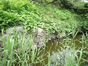 石積みと水堀.jpg