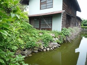 長屋と水堀2.jpg