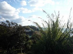 雑賀崎が見える1.jpg