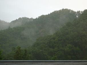 雨が降る2.jpg