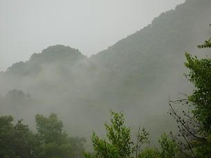 雨が降る4.jpg