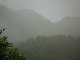 雨が降る5.jpg