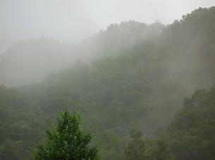 雨が降る6.jpg