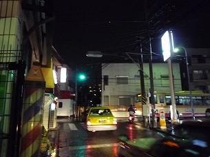 雨の右よし左よし鳥佳.jpg